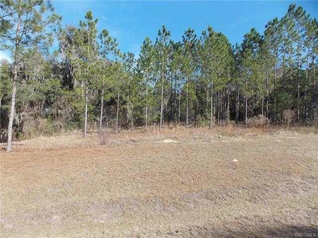 3315 N Canterbury Lake Drive, Hernando, FL 34442 (MLS #768812) :: Plantation Realty Inc.