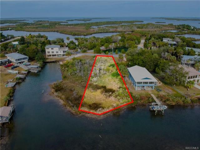 537 N Lake Circle, Crystal River, FL 34429 (MLS #768845) :: Plantation Realty Inc.