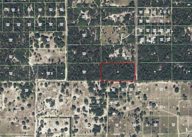 5944 S Gray Oak Terrace, Lecanto, FL 34461 (MLS #768905) :: Plantation Realty Inc.