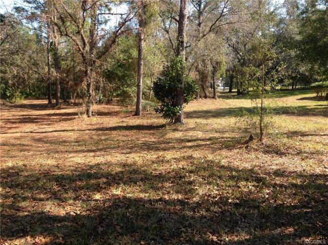 4568 N Pine Valley Loop, Lecanto, FL 34461 (MLS #768926) :: Plantation Realty Inc.