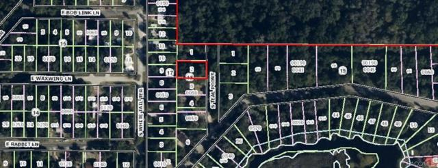 4826 Teal Point S, Floral City, FL 34436 (MLS #769019) :: Plantation Realty Inc.