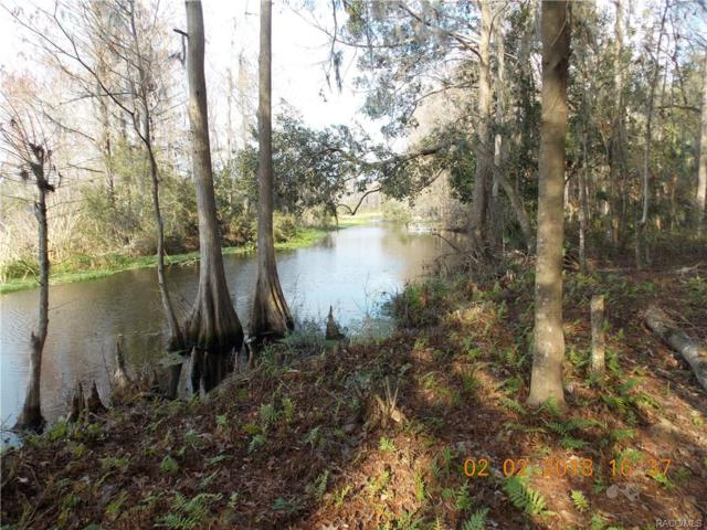 3427 W Cypress Drive, Dunnellon, FL 34433 (MLS #769024) :: Plantation Realty Inc.