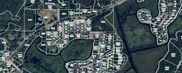 7782 E Timber Lane, Inverness, FL 34453 (MLS #770109) :: Plantation Realty Inc.