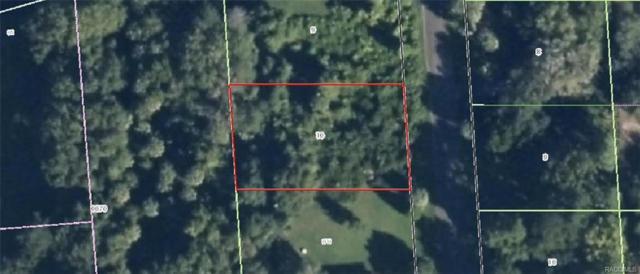 1062 N Fan Palm Point, Crystal River, FL 34429 (MLS #770128) :: Plantation Realty Inc.
