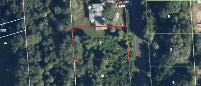 1076 N Fan Palm Point, Crystal River, FL 34429 (MLS #770129) :: Plantation Realty Inc.