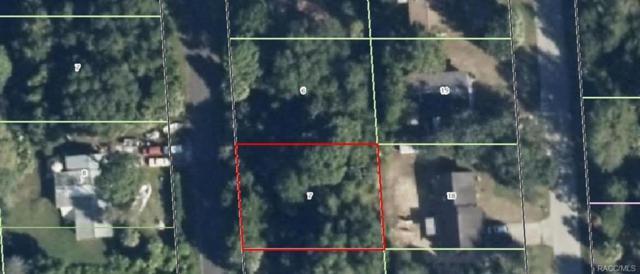 1089 N Fan Palm Point, Crystal River, FL 34429 (MLS #770132) :: Plantation Realty Inc.