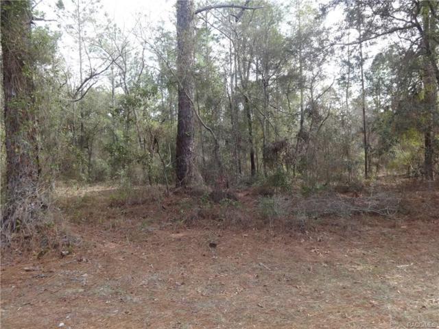 10243 N Sun City Terrace, Dunnellon, FL 34433 (MLS #770146) :: Plantation Realty Inc.