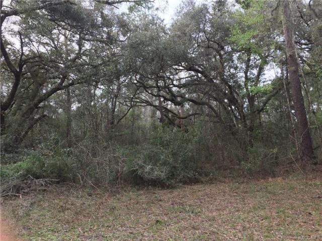 13220 S Thexa Terrace, Floral City, FL 34436 (MLS #770158) :: Plantation Realty Inc.