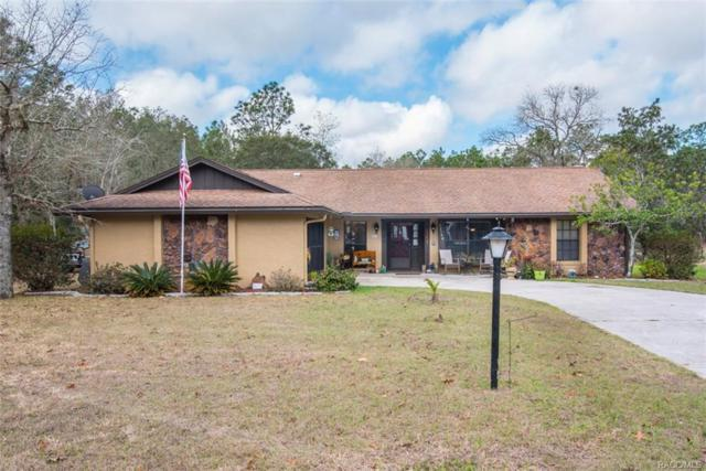 12140 S Brierwood Point, Floral City, FL 34436 (MLS #770214) :: Plantation Realty Inc.
