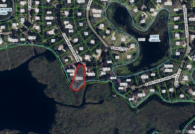 9498 E Baymeadows Drive, Inverness, FL 34453 (MLS #770220) :: Plantation Realty Inc.