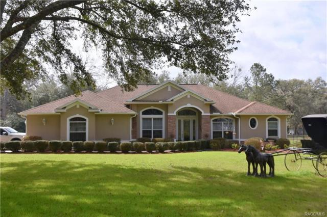 7222 E Savannah Court, Floral City, FL 34436 (MLS #770241) :: Plantation Realty Inc.