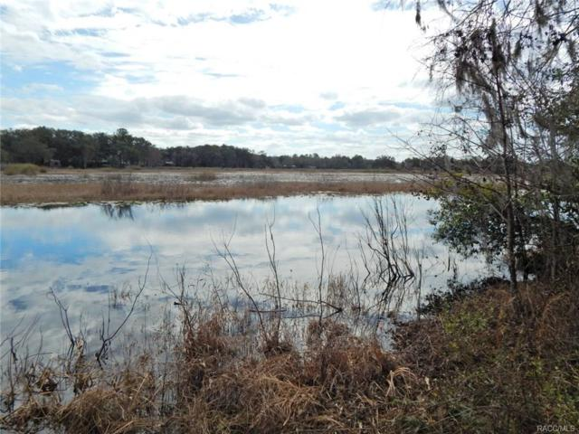 4396 E Shorewood Drive, Hernando, FL 34442 (MLS #770253) :: Plantation Realty Inc.