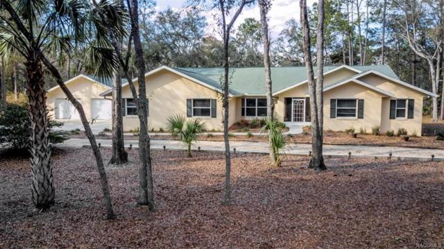 11751 W Caladium Street, Crystal River, FL 34428 (MLS #770259) :: Plantation Realty Inc.