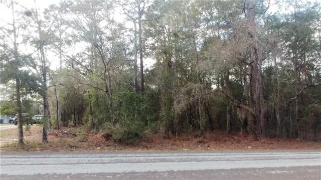 12180 S Elm Point, Floral City, FL 34436 (MLS #770287) :: Plantation Realty Inc.
