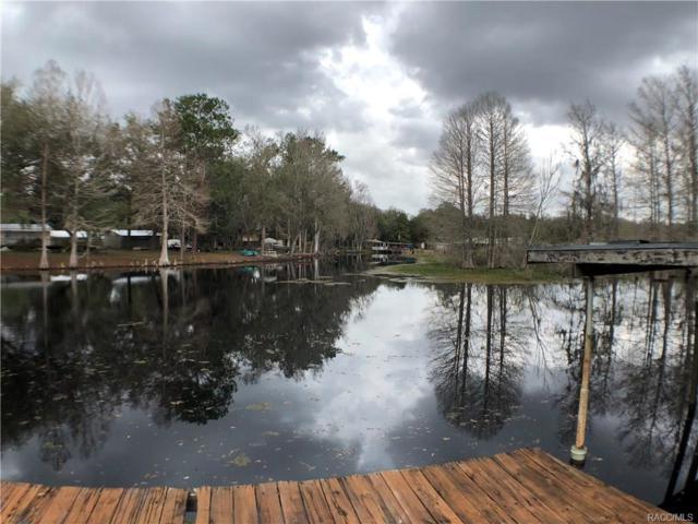 10633 E Turtle Lane, Floral City, FL 34436 (MLS #770292) :: Plantation Realty Inc.