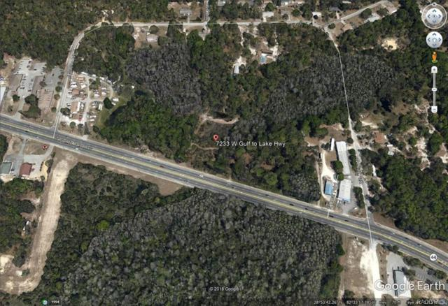 7233 W Gulf To Lake Highway, Crystal River, FL 34429 (MLS #770302) :: Plantation Realty Inc.