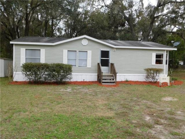 12314 N Margaret Terrace, Dunnellon, FL 34434 (MLS #770304) :: Plantation Realty Inc.