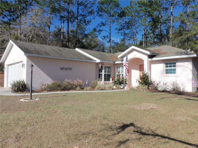 9832 SW 196th Avenue Road, Dunnellon, FL 34432 (MLS #770326) :: Plantation Realty Inc.