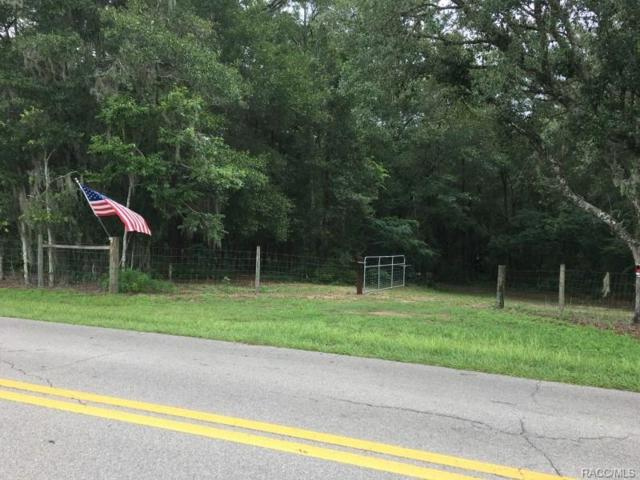 7831 E Rooks Road, Floral City, FL 34436 (MLS #770332) :: Plantation Realty Inc.