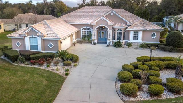 480 W Mickey Mantle Path, Hernando, FL 34442 (MLS #770333) :: Plantation Realty Inc.