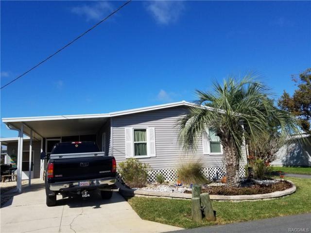 11695 W Clearwater Court, Homosassa, FL 34448 (MLS #770394) :: Plantation Realty Inc.