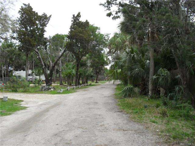 14374 W Ebbtide Court, Crystal River, FL 34429 (MLS #770422) :: Plantation Realty Inc.
