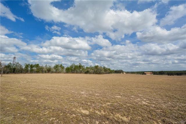 5597 E Orion Court, Floral City, FL 34436 (MLS #770436) :: Plantation Realty Inc.