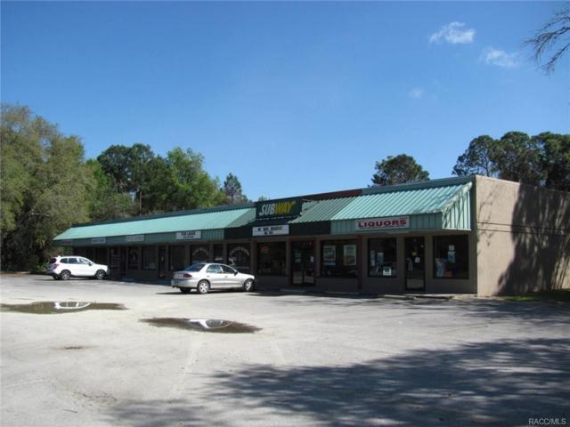 18 Hwy 40 Highway, Inglis, FL 34449 (MLS #770456) :: Plantation Realty Inc.