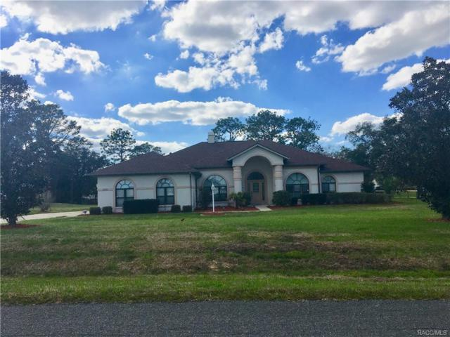 410 N Man O War Drive, Inverness, FL 34453 (MLS #770465) :: Plantation Realty Inc.