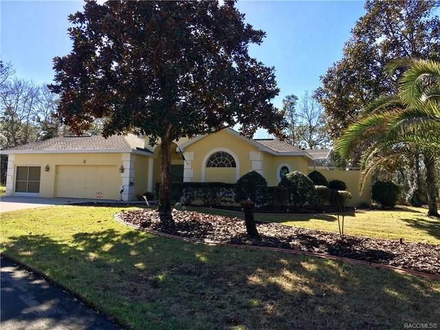 6 Stokesia Court N, Homosassa, FL 34446 (MLS #770472) :: Plantation Realty Inc.
