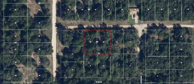 2007 Walden Street, Inverness, FL 34453 (MLS #770476) :: Plantation Realty Inc.