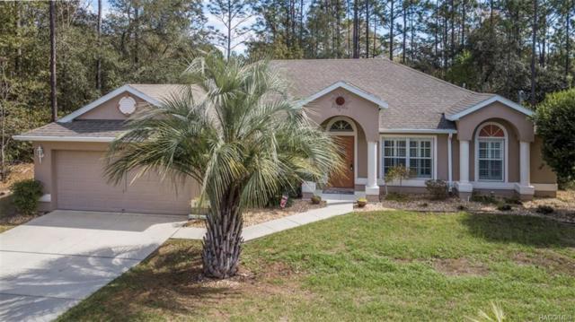 8041 N Dyke Way, Citrus Springs, FL 34434 (MLS #770480) :: Plantation Realty Inc.