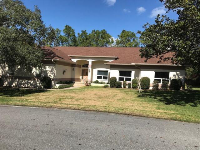 11 Spruce Pine Court N, Homosassa, FL 34446 (MLS #770493) :: Plantation Realty Inc.