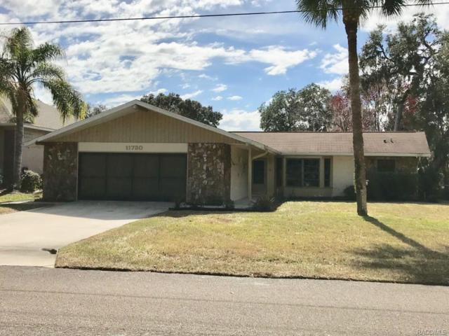 11730 W Waterway Drive, Homosassa, FL 34448 (MLS #770497) :: Plantation Realty Inc.