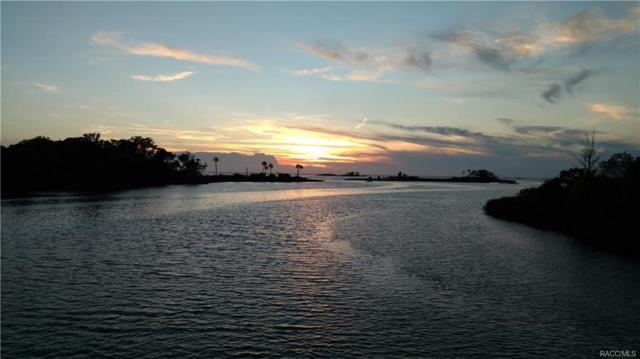 0 Magnolia, Yankeetown, FL 34498 (MLS #770512) :: Plantation Realty Inc.