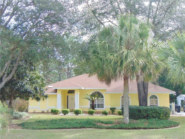 4465 W Horseshoe Drive, Beverly Hills, FL 34465 (MLS #770516) :: Plantation Realty Inc.
