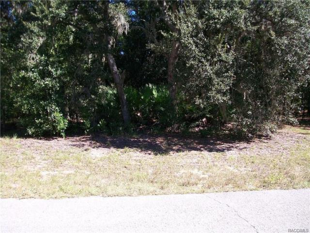 4631 N Rushmore Loop, Beverly Hills, FL 34465 (MLS #770518) :: Plantation Realty Inc.