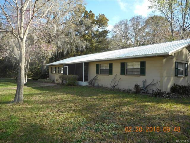 47 Framlingham Drive, Inglis, FL 34449 (MLS #770530) :: Plantation Realty Inc.