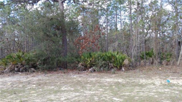 2924 N Stampede Drive, Beverly Hills, FL 34465 (MLS #770533) :: Plantation Realty Inc.