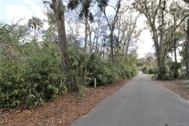 881 N Gardenview Terrace, Crystal River, FL 34429 (MLS #770538) :: Plantation Realty Inc.