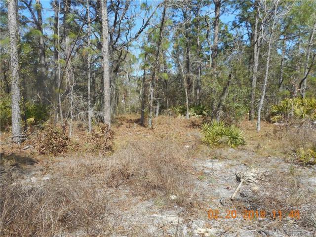 6271 W Oak Park Boulevard, Homosassa, FL 34446 (MLS #770544) :: Plantation Realty Inc.