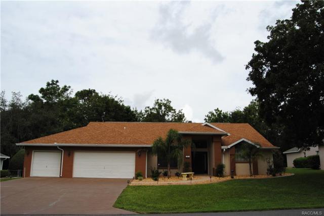 32 Linder Circle, Homosassa, FL 34446 (MLS #770562) :: Plantation Realty Inc.