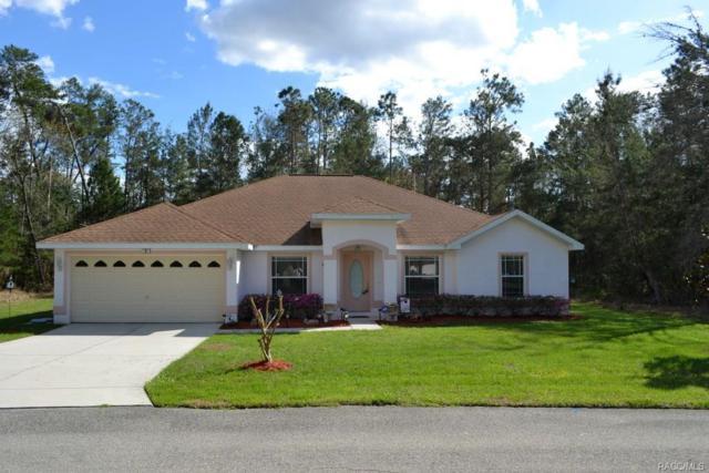 8 Phlox Court E, Homosassa, FL 34446 (MLS #770564) :: Plantation Realty Inc.