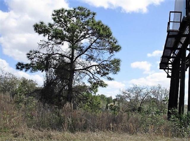 0000 Needham Court, Weeki Wachee, FL 34613 (MLS #770633) :: Plantation Realty Inc.