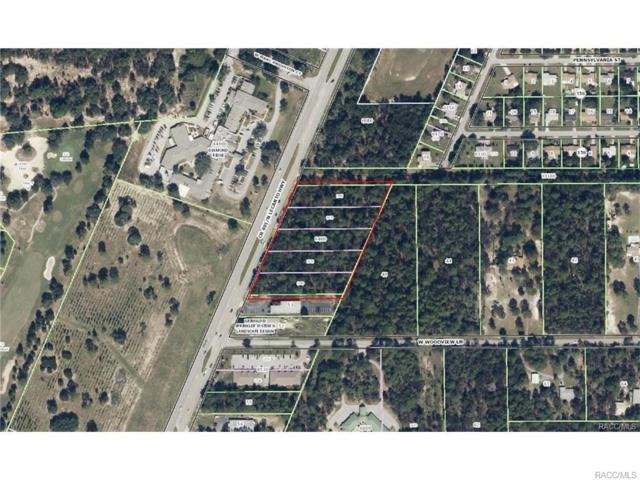2743 N Lecanto Highway, Lecanto, FL 34461 (MLS #770658) :: Plantation Realty Inc.