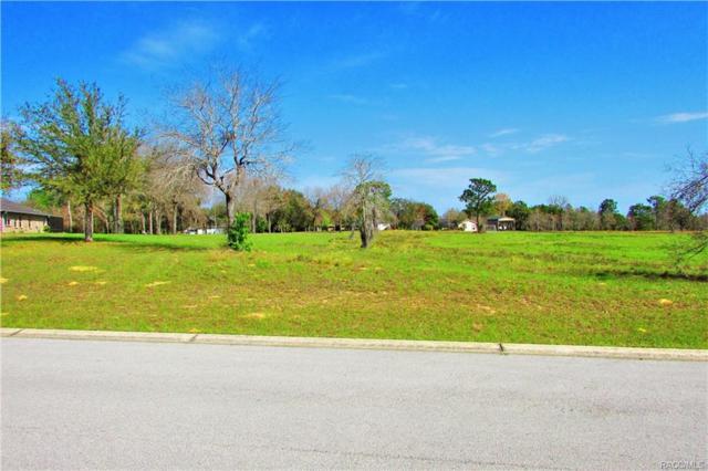 1653 E Ridgeline Path, Inverness, FL 34453 (MLS #770676) :: Plantation Realty Inc.