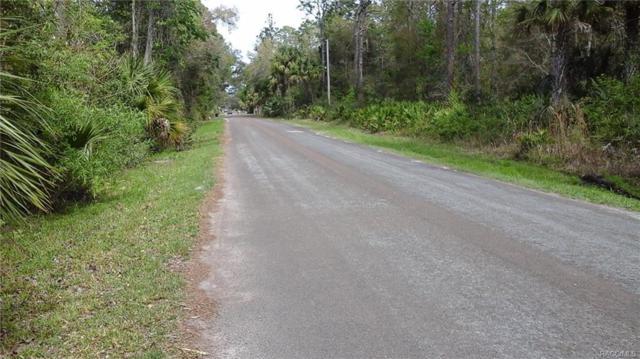 8048 W Fern Place, Homosassa, FL 34448 (MLS #770811) :: Plantation Realty Inc.