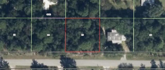 2779 E Mars Street, Inverness, FL 34453 (MLS #770813) :: Plantation Realty Inc.