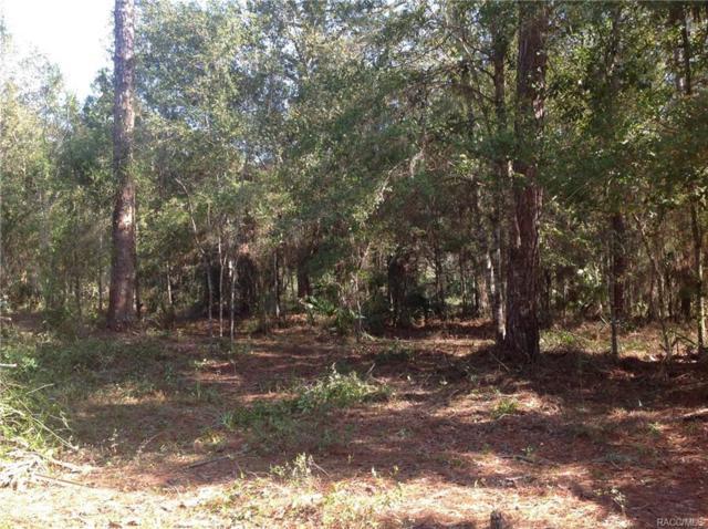 8660 SE 144 Street, Inglis, FL 34449 (MLS #770822) :: Plantation Realty Inc.