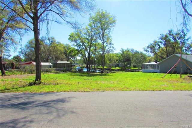 6287 N Crew Terrace, Hernando, FL 34442 (MLS #770913) :: Plantation Realty Inc.